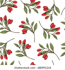 Goji berries on a branch, vector seamless pattern.
