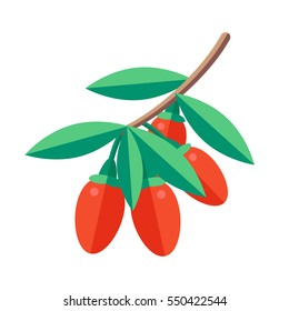 Goji berries vector illustration. Superfood wolfberry icon. Healthy detox natural product. Flat design organic food.
