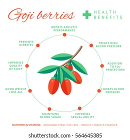 Goji berry health benefits and nutrition infographics. Superfood wolfberry fruit nutrients and vitamins information. Healthy detox natural product info. Flat vector organic food icon.