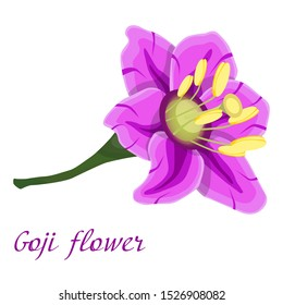 Goji flower. Beautiful lilac flower. Vector illustration for design and web.