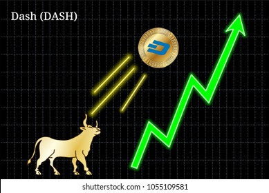 Gold bull, throwing up Dash (DASH) cryptocurrency golden coin up the trend. Bullish Dash (DASH) chart