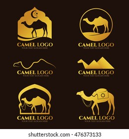 Gold Camel logo and sign vector set design