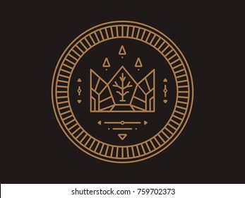Gold coin with crown and emblem and wood patterns