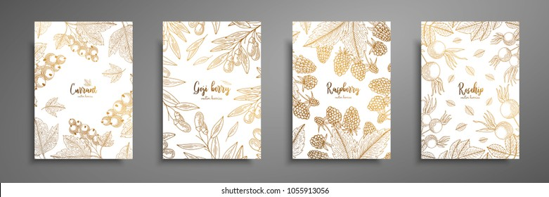 Gold collection of cards design with berries. Vintage gold frame with ripe berries illustrations - currant, goji berries, raspberry, rosehip. Great design for natural and organic products