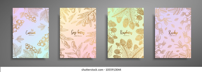 Gold colorful collection of cards design with berries. Vintage gold frame with berries illustrations - currant, goji berries, raspberry, rosehip. Great design for natural and organic products