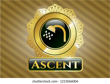 Gold emblem or badge with shower icon and Ascent text inside