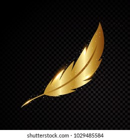 Gold feather vector illustration