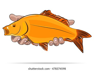 Gold fish in a hands on a white background. Vector illustration.