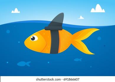 Gold Fish wear shark fin
