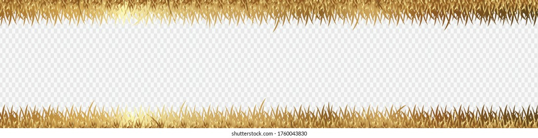 gold grass is longitudinal to use as a design element isolated from a transparent Vector for artwork & Magazine background