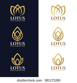 Gold lotus logo symbols on white and dark blue background vector design