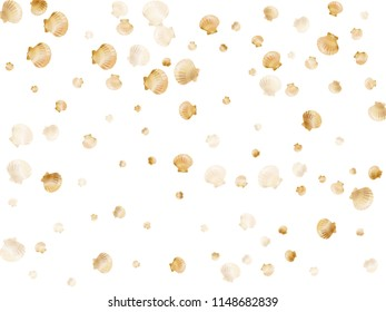 Gold seashells vector, golden pearl bivalved mollusks. Sea scallop, bivalve pearl shell, marine mollusk isolated on white wild life nature background. Trendy gold sea shell design.