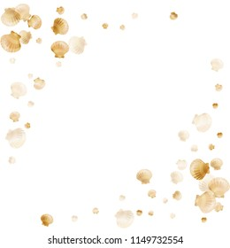 Gold seashells vector, golden pearl bivalved mollusks. Cute scallop, bivalve pearl shell, marine mollusk isolated on white wild life nature background. Rich gold sea shell graphics.