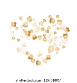 Gold seashells vector, golden pearl bivalved mollusks. Aquarium scallop, bivalve pearl shell, marine mollusk isolated on white wild life nature background. Stylish gold sea shell design.