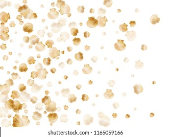 Gold seashells vector, golden pearl bivalved mollusks. Macro scallop, bivalve pearl shell, marine mollusk isolated on white wild life nature background. Trendy gold sea shell graphics.