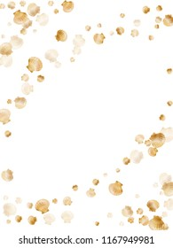 Gold seashells vector, golden pearl bivalved mollusks. Cute scallop, bivalve pearl shell, marine mollusk isolated on white wild life nature background. Stylish gold sea shell design.