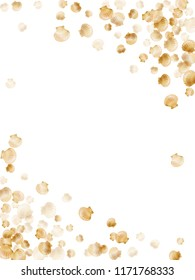 Gold seashells vector, golden pearl bivalved mollusks. Exotic scallop, bivalve pearl shell, marine mollusk isolated on white wild life nature background. Chic gold sea shell graphics.