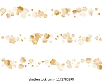 Gold seashells vector, golden pearl bivalved mollusks. Macro scallop, bivalve pearl shell, marine mollusk isolated on white wild life nature background. Rich gold sea shell illustration.