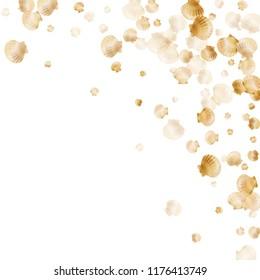 Gold seashells vector, golden pearl bivalved mollusks. Aquatic scallop, bivalve pearl shell, marine mollusk isolated on white wild life nature background. Stylish gold sea shell illustration.