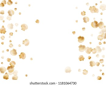 Gold seashells vector, golden pearl bivalved mollusks. Underwater scallop, bivalve pearl shell, marine mollusk isolated on white wild life nature background. Stylish gold sea shell graphics.