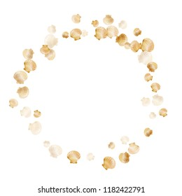 Gold seashells vector, golden pearl bivalved mollusks. Ocean scallop, bivalve pearl shell, marine mollusk isolated on white wild life nature background. Chic gold sea shell graphics.