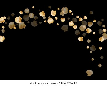 Gold seashells vector, golden pearl bivalved mollusks. Exotic scallop, bivalve pearl shell, marine mollusk isolated on black wild life nature background. Chic gold sea shell illustration.