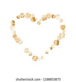 Gold seashells vector, golden pearl bivalved mollusks. Oceanic scallop, bivalve pearl shell, marine mollusk isolated on white wild life nature background. Rich gold sea shell vector.