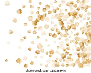 Gold seashells vector, golden pearl bivalved mollusks. Underwater scallop, bivalve pearl shell, marine mollusk isolated on white wild life nature background. Trendy gold sea shell design.