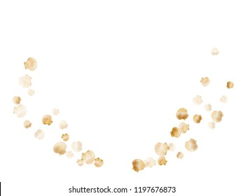 Gold seashells vector, golden pearl bivalved mollusks. Ocean scallop, bivalve pearl shell, marine mollusk isolated on white wild life nature background. Stylish gold sea shell design.
