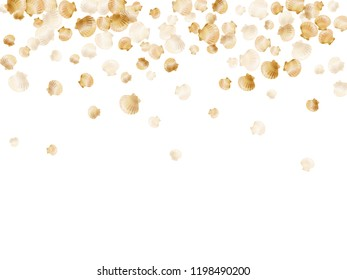 Gold seashells vector, golden pearl bivalved mollusks. Cartoon scallop, bivalve pearl shell, marine mollusk isolated on white wild life nature background. Rich gold sea shell vector.