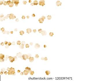 Gold seashells vector, golden pearl bivalved mollusks. Sea scallop, bivalve pearl shell, marine mollusk isolated on white wild life nature background. Chic gold sea shell design.