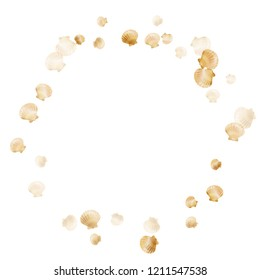 Gold seashells vector, golden pearl bivalved mollusks. Sea scallop, bivalve pearl shell, marine mollusk isolated on white wild life nature background. Cool gold sea shell graphics.