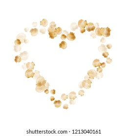 Gold seashells vector, golden pearl bivalved mollusks. Aquarium scallop, bivalve pearl shell, marine mollusk isolated on white wild life nature background. Cool gold sea shell vector.