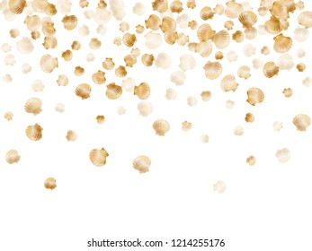 Gold seashells vector, golden pearl bivalved mollusks. Cute scallop, bivalve pearl shell, marine mollusk isolated on white wild life nature background. Stylish gold sea shell vector.