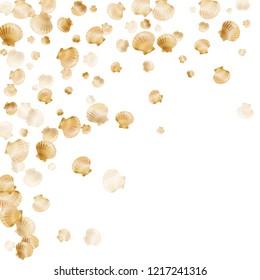 Gold seashells vector, golden pearl bivalved mollusks. Sea scallop, bivalve pearl shell, marine mollusk isolated on white wild life nature background. Trendy gold sea shell design.