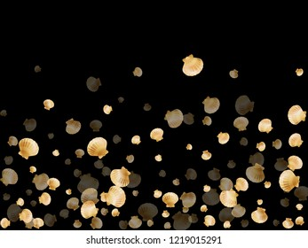 Gold seashells vector, golden pearl bivalved mollusks. Ocean scallop, bivalve pearl shell, marine mollusk isolated on black wild life nature background. Stylish gold sea shell graphics.