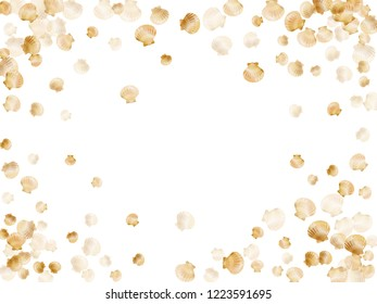 Gold seashells vector, golden pearl bivalved mollusks. Macro scallop, bivalve pearl shell, marine mollusk isolated on white wild life nature background. Rich gold sea shell graphics.