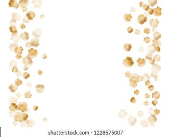Gold seashells vector, golden pearl bivalved mollusks. Aquatic scallop, bivalve pearl shell, marine mollusk isolated on white wild life nature background. Trendy gold sea shell vector.