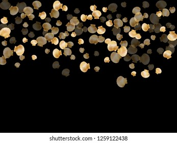 Gold seashells vector, golden pearl bivalved mollusks. Oceanic scallop, bivalve pearl shell, marine mollusk isolated on black wild life nature background. Cool gold sea shell vector.