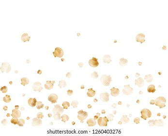Gold seashells vector, golden pearl bivalved mollusks. Exotic scallop, bivalve pearl shell, marine mollusk isolated on white wild life nature background. Stylish gold sea shell design.