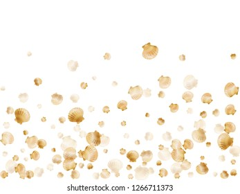 Gold seashells vector, golden pearl bivalved mollusks. Aquarium scallop, bivalve pearl shell, marine mollusk isolated on white wild life nature background. Rich gold sea shell vector.