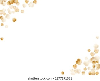 Gold seashells vector, golden pearl bivalved mollusks. Exotic scallop, bivalve pearl shell, marine mollusk isolated on white wild life nature background. Trendy gold sea shell vector.