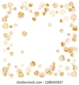 Gold seashells vector, golden pearl bivalved mollusks. Aquarium scallop, bivalve pearl shell, marine mollusk isolated on white wild life nature background. Rich gold sea shell illustration.