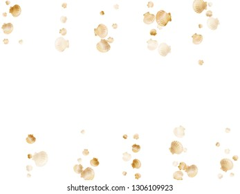 Gold seashells vector, golden pearl bivalved mollusks. Aquatic scallop, bivalve pearl shell, marine mollusk isolated on white wild life nature background. Trendy gold sea shell design.