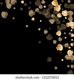 Gold seashells vector, golden pearl bivalved mollusks. Ocean scallop, bivalve pearl shell, marine mollusk isolated on black wild life nature background. Rich gold sea shell graphics.