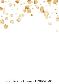 Gold seashells vector, golden pearl bivalved mollusks. Oceanic scallop, bivalve pearl shell, marine mollusk isolated on white wild life nature background. Trendy gold sea shell graphics.