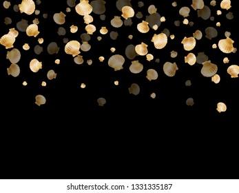 Gold seashells vector, golden pearl bivalved mollusks. Aquarium scallop, bivalve pearl shell, marine mollusk isolated on black wild life nature background. Trendy gold sea shell design.