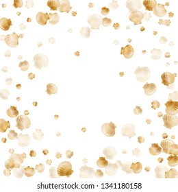 Gold seashells vector, golden pearl bivalved mollusks. Oceanic scallop, bivalve pearl shell, marine mollusk isolated on white wild life nature background. Trendy gold sea shell vector.