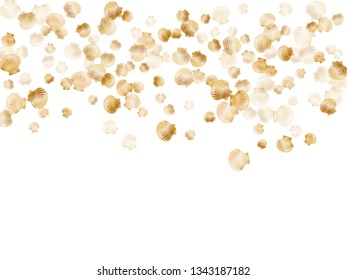 Gold seashells vector, golden pearl bivalved mollusks. Cartoon scallop, bivalve pearl shell, marine mollusk isolated on white wild life nature background. Trendy gold sea shell design.