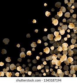 Gold seashells vector, golden pearl bivalved mollusks. Sea scallop, bivalve pearl shell, marine mollusk isolated on black wild life nature background. Chic gold sea shell illustration.
